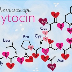 under-the-molecule-oxytocin-banner
